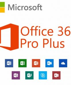 Office 365 Pro Plus Account